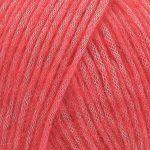 25 - raspberry